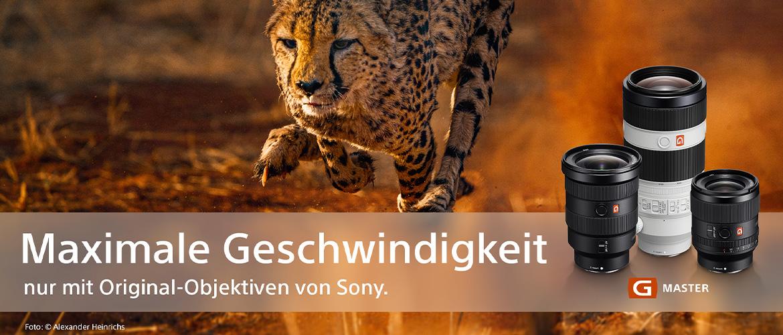 DIe Originale von Sony